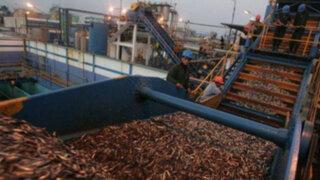 Afirman que Produce debe acatar fallo del PJ sobre ordenamiento pesquero