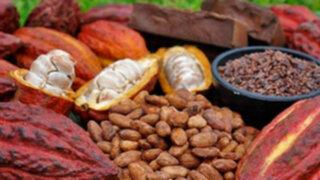 Perú se convertiría en líder global de la producción de cacao fino