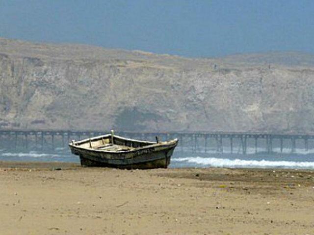 Chiclayo: animales marinos aparecen muertos en playa de Puerto Eten