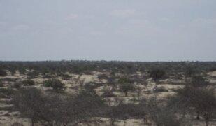 Lambayeque podría ser declarada en emergencia por falta de lluvias