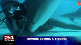 VIDEO: buzo dominó a peligroso tiburón usando sólo las manos
