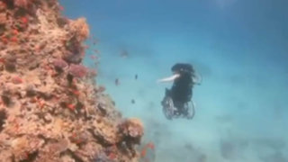 Mujer sorprende al mundo buceando en silla de ruedas