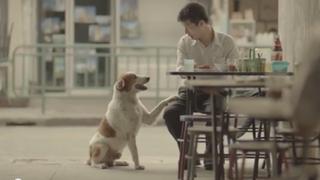 VIDEO: emotivo viral tailandés que nos invita a ser mejores personas
