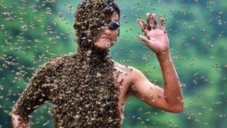 No soportarás el dolor: los 3 peores lugares donde te puede picar una abeja
