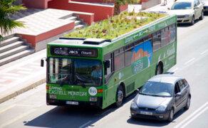 España: singular iniciativa convierte buses en jardines rodantes