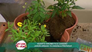 Lorena y Nicolasa: sepa cómo hacer un huerto con plantas aromáticas