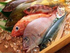 FOTOS: Seis alimentos que desaparecerán por el cambio climático
