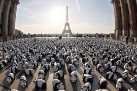 FOTOS: artista crea 1.600 pandas de papel y los lleva a pasear por el mundo