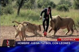 VIDEO: hombre juega partido de fútbol con leones y tigres en Sudáfrica