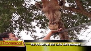 El parque de las leyendas: conozca lo mejor del zoológico más visitado del Perú