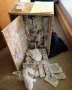 Inglaterra: encuentran más de 8 millones de dólares en una caja de madera