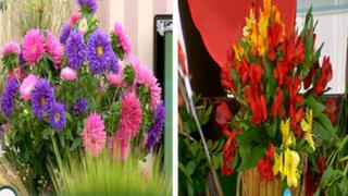 Sepa gracias a Lorena y Nicolasa cómo hacer arreglos florales en casa
