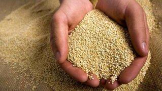 Quinua: producto de exportación del Perú para el mundo
