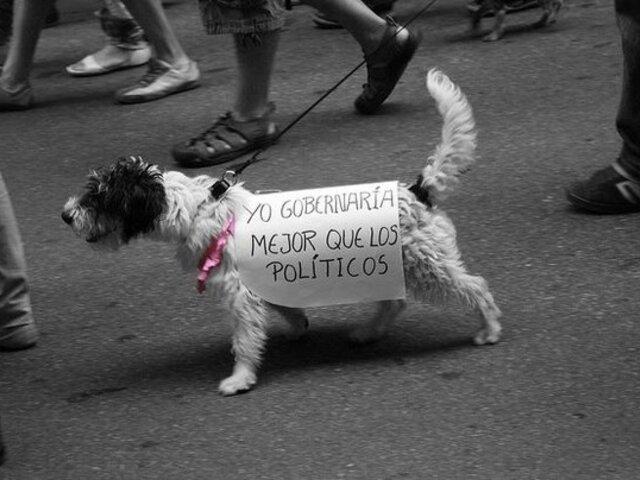 FOTOS: los 19 carteles más creativos vistos durante marchas y protestas