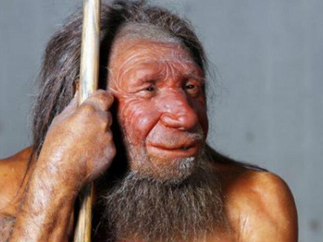 Hombre de Neanderthal complementaba con vegetales su dieta carnívora