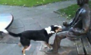 VIDEO: ¿Qué pasa cuando un perro confunde a una estatua con una persona?