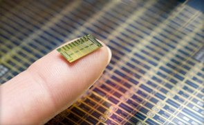 EEUU: crean ingenioso chip anticonceptivo que funcionará a control remoto