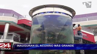 Conocido centro comercial de Lima inauguró acuario más grande de Sudamérica
