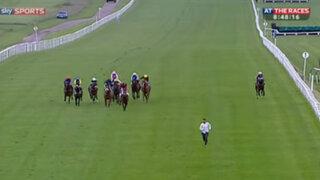 Hombre burló seguridad de un hipódromo e intentó competir en carrera de caballos