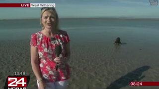 Inglaterra: perro se orinó frente a reportera en pleno enlace en vivo