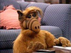 Alf: el extraterrestre más querido de la TV vuelve a la pantalla chica