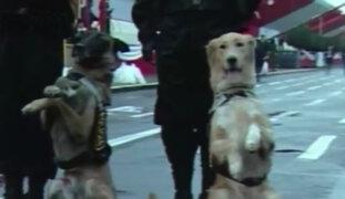 Brigada canina será una de las principales atracciones del Desfile Militar