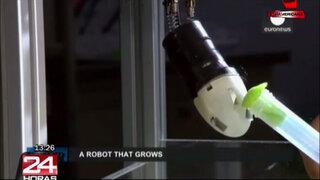 Expertos planean crear robot con cualidades de las raíces de las plantas