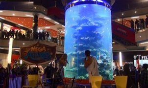 Conozca el acuario de MegaPlaza, el más grande de Sudamérica