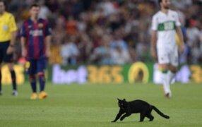 Gato negro invade cancha en el debut del Barcelona en el Camp Nou