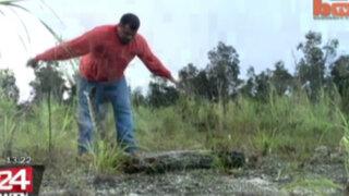 Cazador se gana la vida capturando a serpientes con sus propias manos