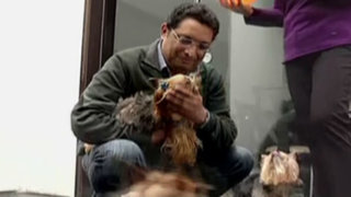 Yo Soy Candidato: postulante a Miraflores propone trato amigable a mascotas