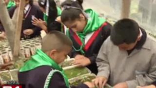 Colegio ecológico: escolares aprenden a cuidar nuestro medio ambiente