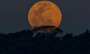 La última Superluna del año se vio en distintas partes del mundo