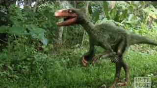FOTOS: los 10 mitos sobre los dinosaurios que tienes que dejar de creer