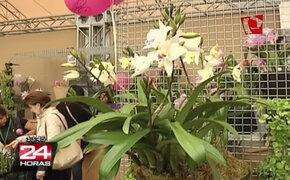 Realizan V Feria Internacional Perú Flora 2014 en Parque de la Exposición