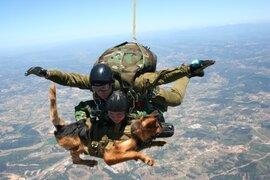 Paracaidismo extremo: cuando el hombre trata de conquistar los aires y las alturas