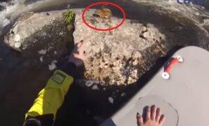 Canadá: rescatan a una ardilla atrapada entre las rocas de un embravecido río