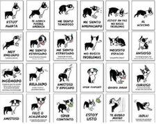 Descubre cuál es el lenguaje corporal de tu perro