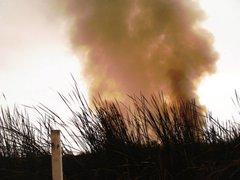 FOTOS: estas son las imágenes del incendio en los Pantanos de Villa