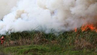 Pantanos de Villa: incendio fue controlado tras 11 horas