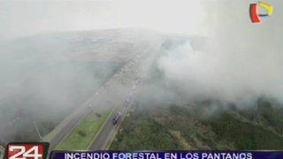 Chorrillos: Incendio forestal en Pantanos de Villa habría sido provocado