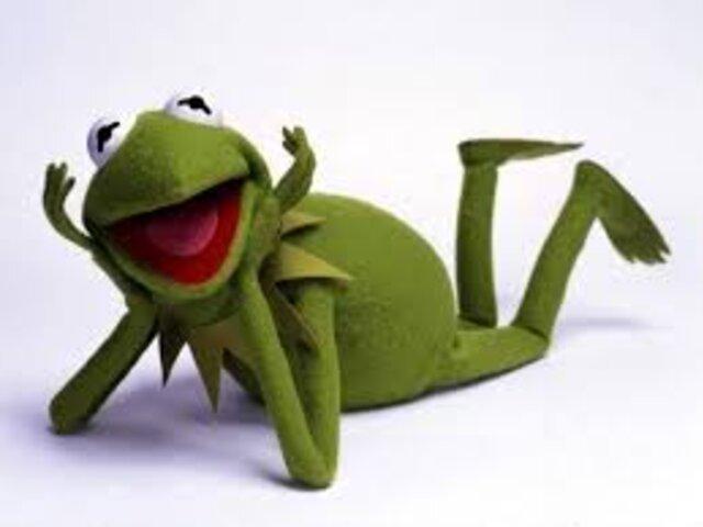 La rana René: la historia del popular meme que se ha vuelto en el favorito en redes sociales