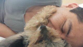 VIDEO: adorable perro acaricia a su dueño mientras duerme