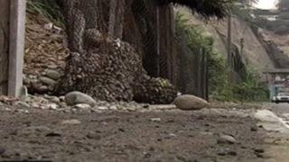 Enmallado de la Costa Verde sufre contratiempos