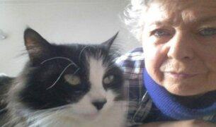 Gato retornó a casa de su dueña tras permanecer más de un año perdido
