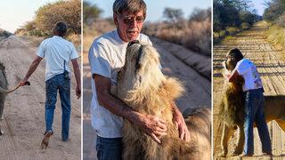 Conoce la sorprendente historia del hombre que tiene un león como mascota