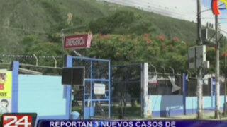 Tres nuevos casos de chikungunya se registraron en el Cusco