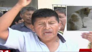Huaycán: vecinos protestan contra directora de hospital donde hallaron un gato
