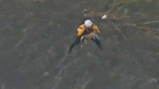 YouTube: mira el dramático rescate de un perro atrapado en río desbordado
