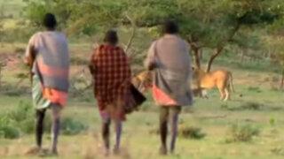YouTube: estos hombres le roban la comida a fieros leones sin luchar ¡Increíble!